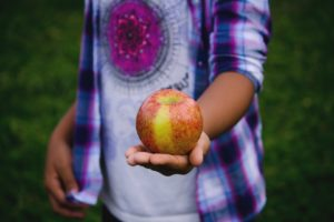 Academic Coaching Services Verses Popular Learning Centers Comparing Apples to Oranges